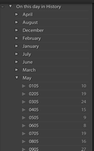 Screenshot of Lightroom tags